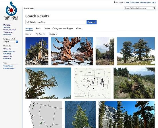 Media search filters.jpg
