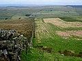 Melkridge Common - geograph.org.uk - 1000262.jpg