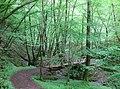 Mettlach (Duitsland) - panoramio (23).jpg