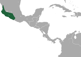 Mexican Shrew area.png