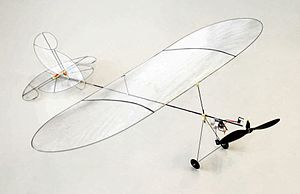 Jean-Daniel Nicoud - Picture of the miniCeline ultralight aircraft by Jean-Daniel Nicoud. This remote-controlled plane weighs only 6 g and is capable of indoor flying.