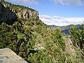 Mirador Valle Gran Rey.JPG