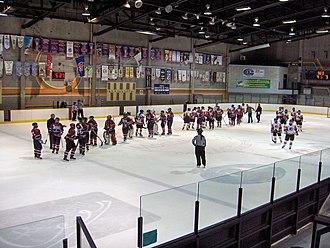 Centre Étienne Desmarteau - Image: Montreal burlington 8janvier 2010 014