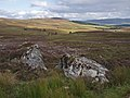 Moorland south of Huntly's Cave - geograph.org.uk - 1462729.jpg