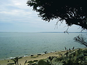 Moriches Bay - Image: Moriches Bay NY