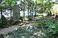 Morris Arboretum - DSC00428.JPG