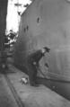 Moses when painting the hull of the cargo ship Elfriede - 1956.png