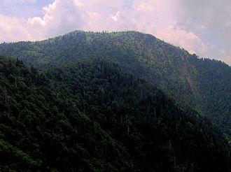 Mount Kephart - Mt. Kephart, looking west from Charlies Bunion