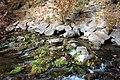 Mount Shasta Big Springs - Mount Shasta City Park - Mount Shasta City, California - DSC02772.JPG