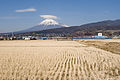 Mt.Fuji from Fuji City 03.jpg