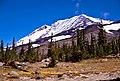 Mt Adams and the Ridge of Wonders-Gifford Pinchot (23834057801).jpg