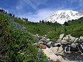 Mt Rainier stream.jpg