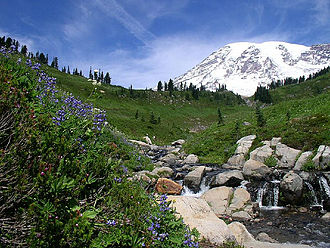 Mount Rainier National Park Travel Guide At Wikivoyage