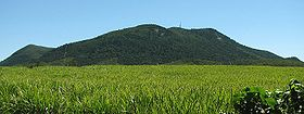 Mt blackwood queensland01.jpg