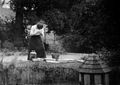 Muriel Robertson fishing for leeches at Elistree Wellcome L0029958.jpg