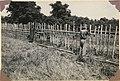 Muruts making bamboo fences at beginning of planting season, Keningau (7930176232).jpg