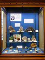 Musée de minéralogie de Strasbourg-Collection de Jean Hermann.jpg