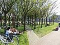 Museumplein (20).jpg