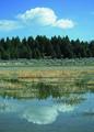 NRCSMT01015 - Montana (4881)(NRCS Photo Gallery).tif