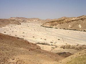Negev - Nahal Paran, Negev