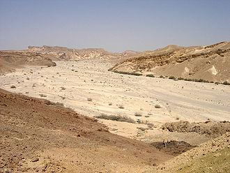 Wadi - Wadi in Nachal Pathe Negev, Israel.