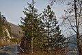 Nacionalni park Drina 50.jpg