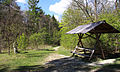Nationalpark Hainich-Erlebnispfad Feensteig-by-Leila-Paul-IMG 3975 09.JPG