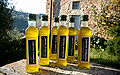 Natural Interaction Olive Oil.jpg