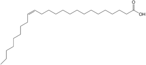 Nervonic acid - Image: Nervonic acid