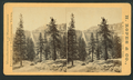 Nevada Falls, 700 ft. high, from Robert N. Dennis collection of stereoscopic views.png