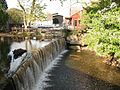 New Hope PA Falls and Millpond.jpg