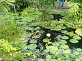 New York Botanical Garden 41.jpg