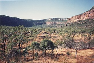 Ngarrabullgan - Ngarrabullgan vegetation below