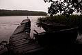 Nidzkie lake2.jpg