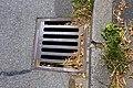 Niedenstraße 43 (Hilden). Reader-15.jpg