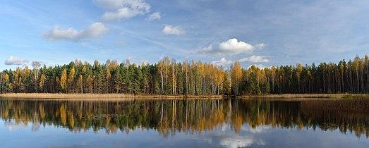 Niinsaare järv.jpg