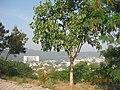 North West View from Hanuman Tekdi Pune - panoramio.jpg