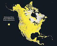 North america rock sedimentary
