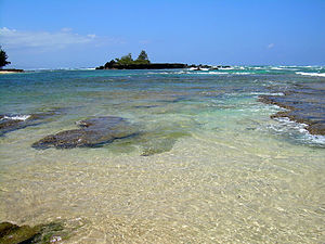 View of the north shore of Oahu, near Shark's ...