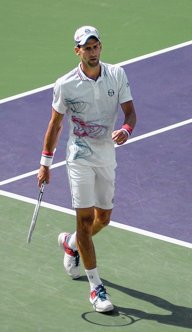 Novak Djokovic Wikiwand