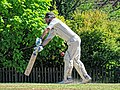 Nuthurst CC v. Henfield CC at Mannings Heath, West Sussex, England 011.jpg