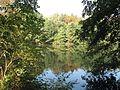 Obora (rybník), plocha.jpg