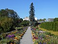 Ogrod Botaniczny w Krakowie 2017-09-28 5751.jpg