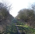Old Railway Line - geograph.org.uk - 367859.jpg