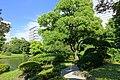 Old Yasuda Garden - Tokyo, Japan - DSC06519.jpg