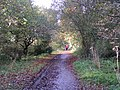 Old railway track, now a cyclepath, looking towards Tiverton - geograph.org.uk - 1573289.jpg