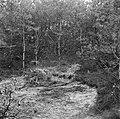 Ondergronds hol voor onderduikers, waar de lijken op 11 april 1945 werden aanget, Bestanddeelnr 900-3004.jpg