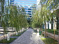 Oracle HQ walkway.JPG