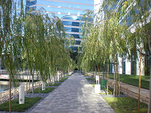 A walkway at the Oracle Corp. headquarters in ...