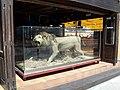 Oroszlán a kocsmában - Lion in the pub - panoramio.jpg